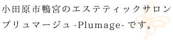 小田原鴨宮のエスティックサロンプリュマージュです。